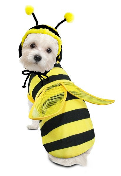 Bumble Bee Dog Costume - Really Good Pets Shop - Costume -  - PuppeLove - 1