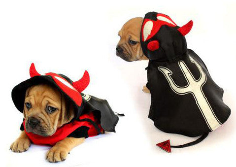 Devil Dog Costume - Really Good Pets Shop - Costume -  - PuppeLove