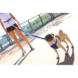 Running Bungee Dog Leash Hands Free by EzyDog - Really Good Pets Shop - Dog Leash -  - EzyDog - 12