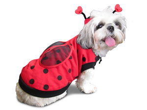 Lady Bug Dog Costume - Really Good Pets Shop - Costume -  - PuppeLove - 1