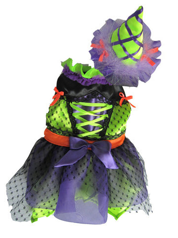 Neon Witch Dog Costume - Really Good Pets Shop - Costume -  - PuppeLove