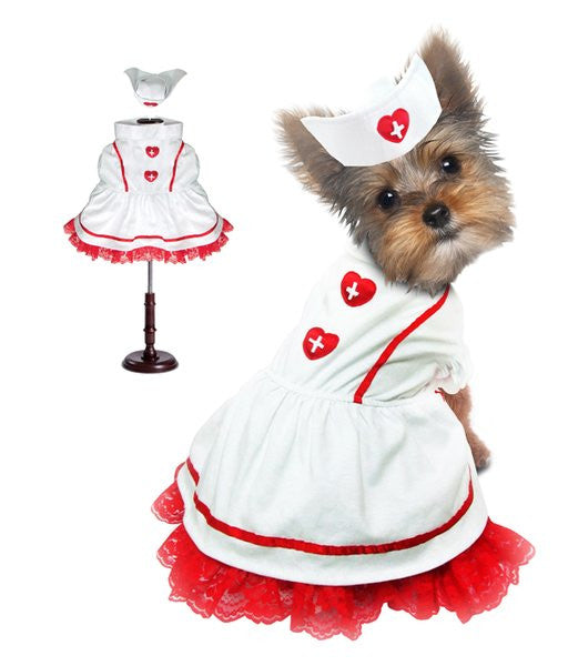 Sweetheart Nurse Dog Costume - Really Good Pets Shop - Costume -  - PuppeLove