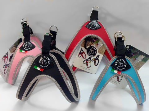 Liberty Buckle Tre Ponti Dog Harness - Really Good Pets Shop - Harness -  - Tre Ponti - 1
