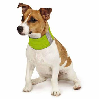 Insect Shield Dog Neck Gaiter Green - Really Good Pets Shop - Dog Outdoor -  - Pet Retail Supply - 1