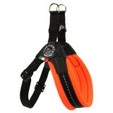 Mesh Neon Adjustable Belly Tre Ponti Dog Harness - Really Good Pets Shop - Harness - 1 / Orange - Tre Ponti - 7