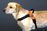 Primo Large Dog Tre Ponti Harness - Really Good Pets Shop - Harness -  - Tre Ponti - 3