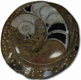 Sculpted Ammonite 03