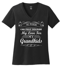 No Words Can Describe Love For Grandkids T-shirt