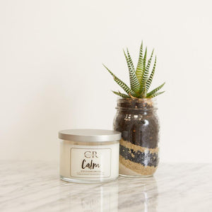 soothing calm candle with succulent plant