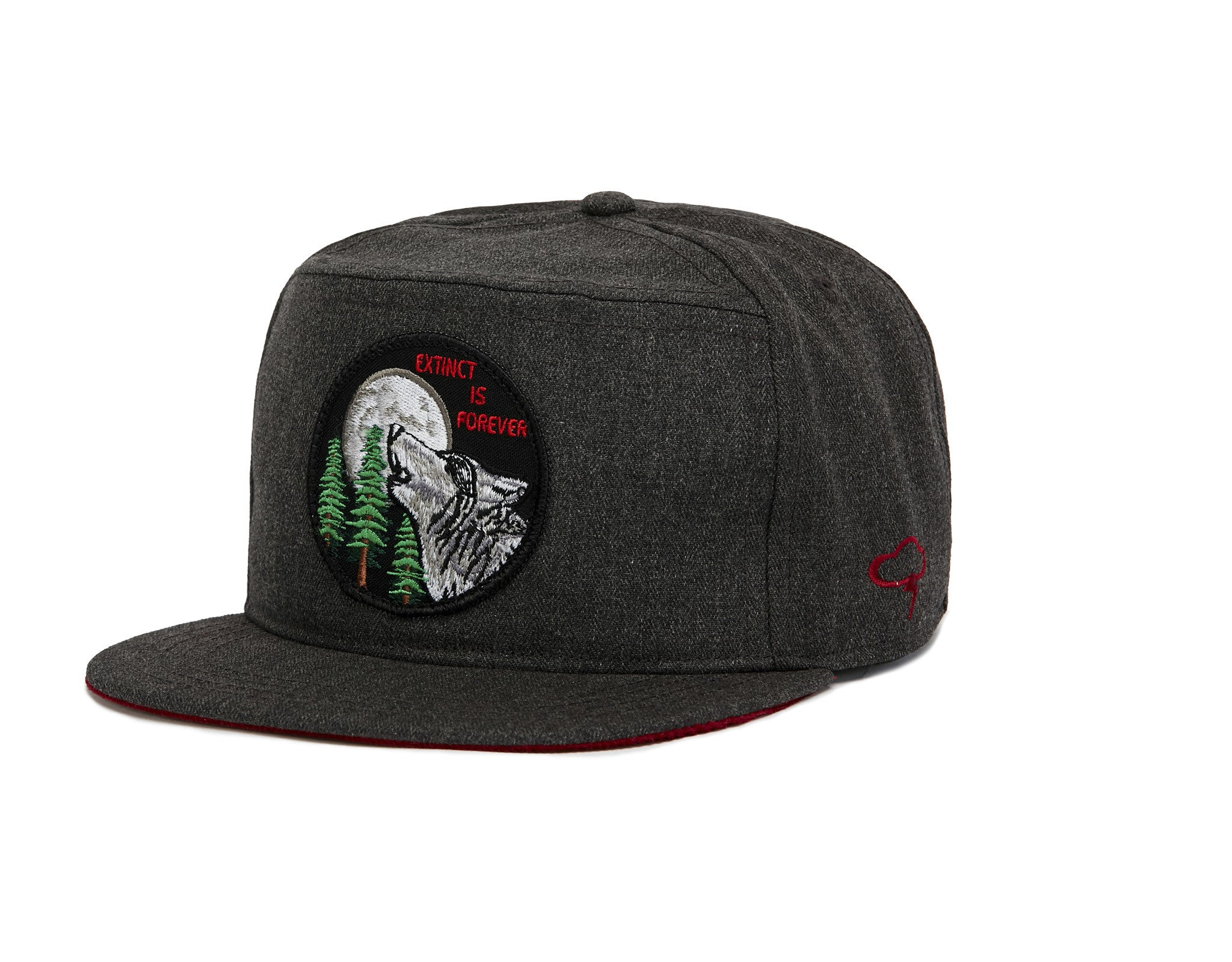 EXTINCT IS FOREVER Snapback
