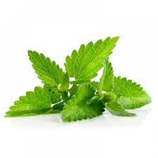 Spearmint Essential Oil 30ML - SyraSkins