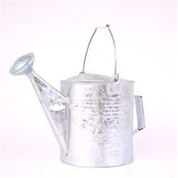 10 qt. Watering Can