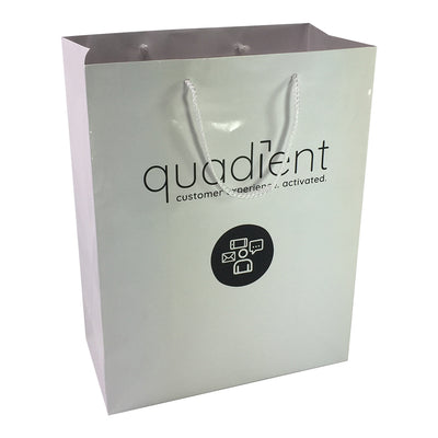 Stock Laminated Paper Carry Bag-Large(SLP-04T)