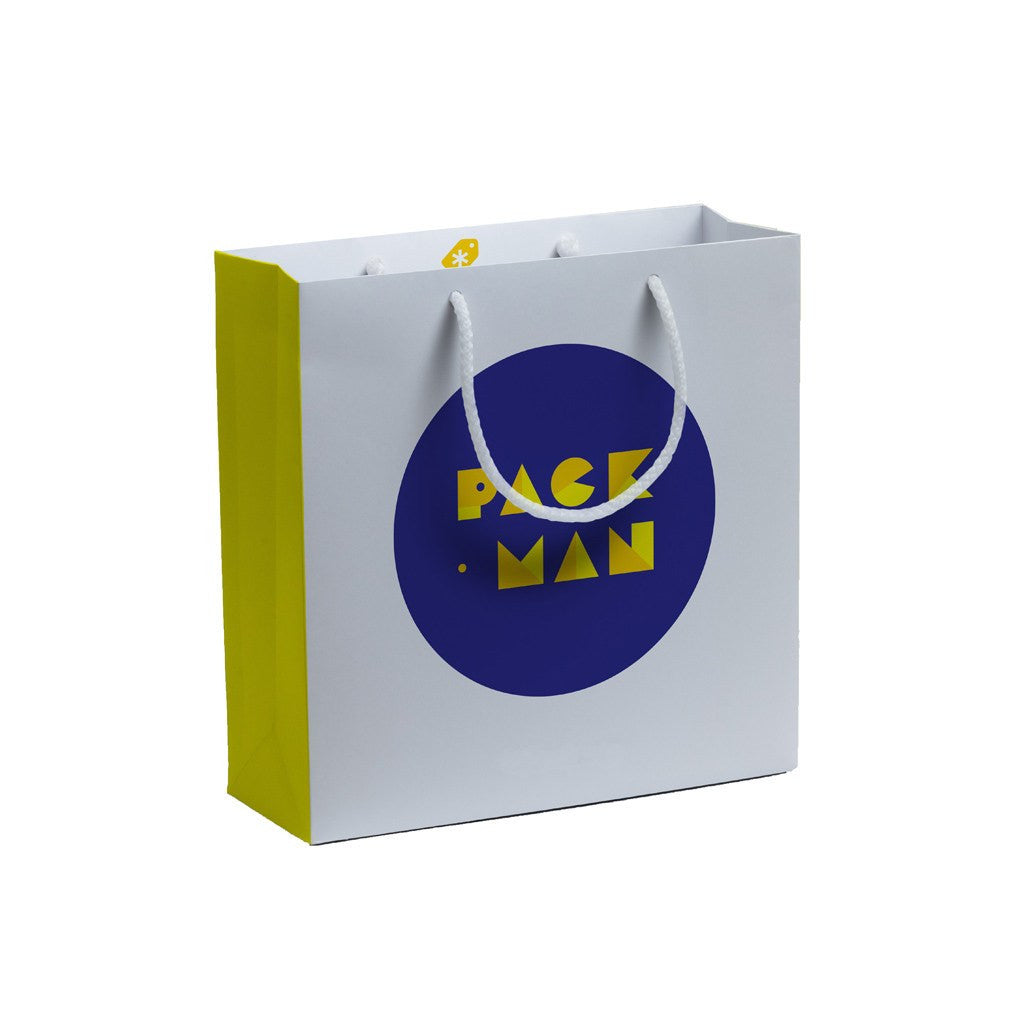 Paper Square Gift Bag-Small(LP-10) - greenpac.com.au