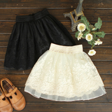 Sweet Embroidered Lace Skirts