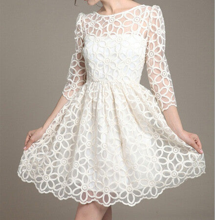Slim Round Neck Lace Dress