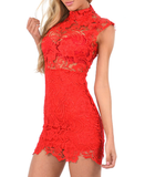 Sexy Embroidered Lace High-Necked Sleeveless Dress
