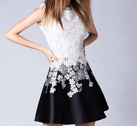 Slim Was Thin Lace Embroidery Sleeveless Dress