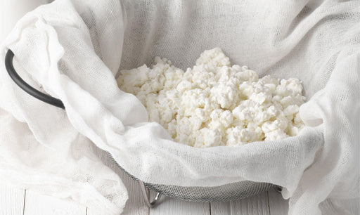 What is Whey Protein Concentrate?