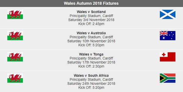 Wales Autumn Rugby International Fixtures 2018 Giftware