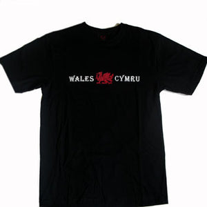 Cymru Dragon Welsh T Shirt - Children's