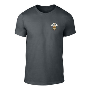 Traditional Prince of Wales Feathers T-Shirt - Adult (Charcoal)