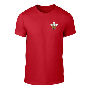 Traditional Prince of Wales Feathers T-Shirt - Adult (Red)