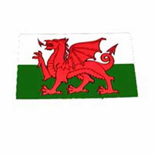 Small Welsh Flag Sticker