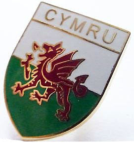 Cymru Welsh Flag - Shield Pin Badge