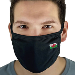 Welsh Flag - Face Mask Cover (3 Ply)