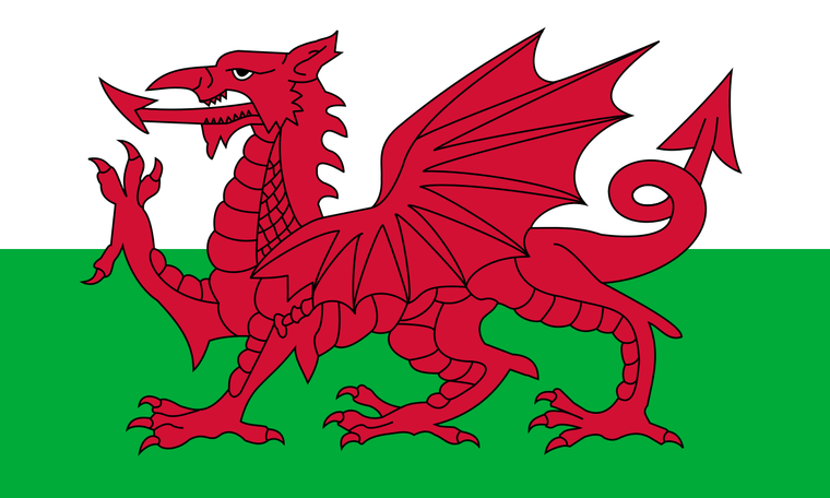 Welsh flag 9ft X 6ft large