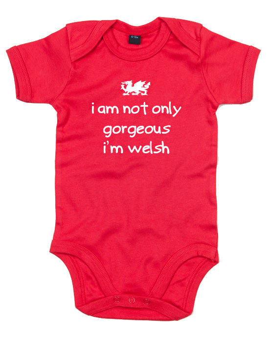 Welsh Babygrow - I'm not only gorgeous i'm Welsh