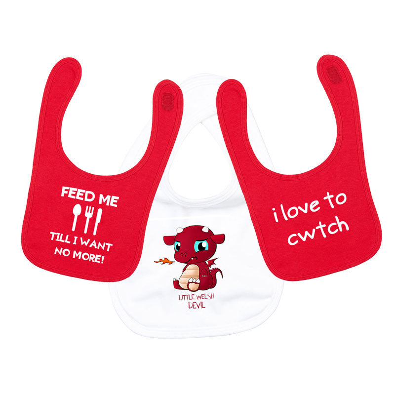 Multi Pack - Welsh Themed Baby Bibs