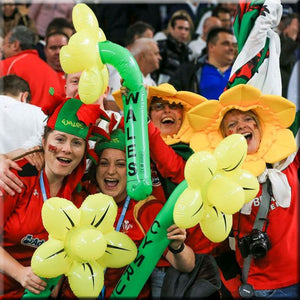 Comical Welsh Daffodil Hat - principality stadium