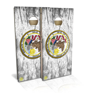 Illinois State Flag Cornhole Board Set