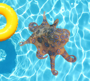 Orange Octopus Underwater Pool Mat Tattoo