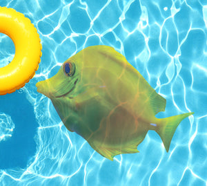 Yellow Tang Underwater Pool Mat Tattoo