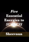 The 5 Essential Energies to Success - Energetic Solutions, Inc Sheevaun Moran