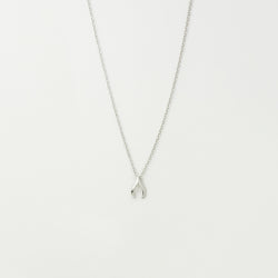 Lucky Wishbone Necklace