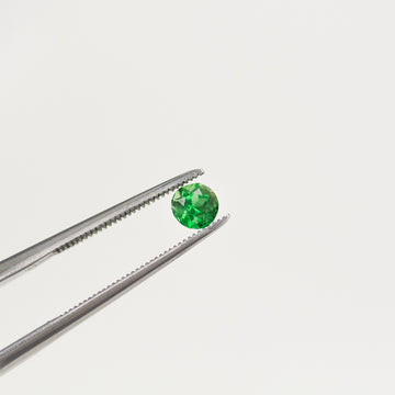 0.33CT Round Chrome Tourmaline