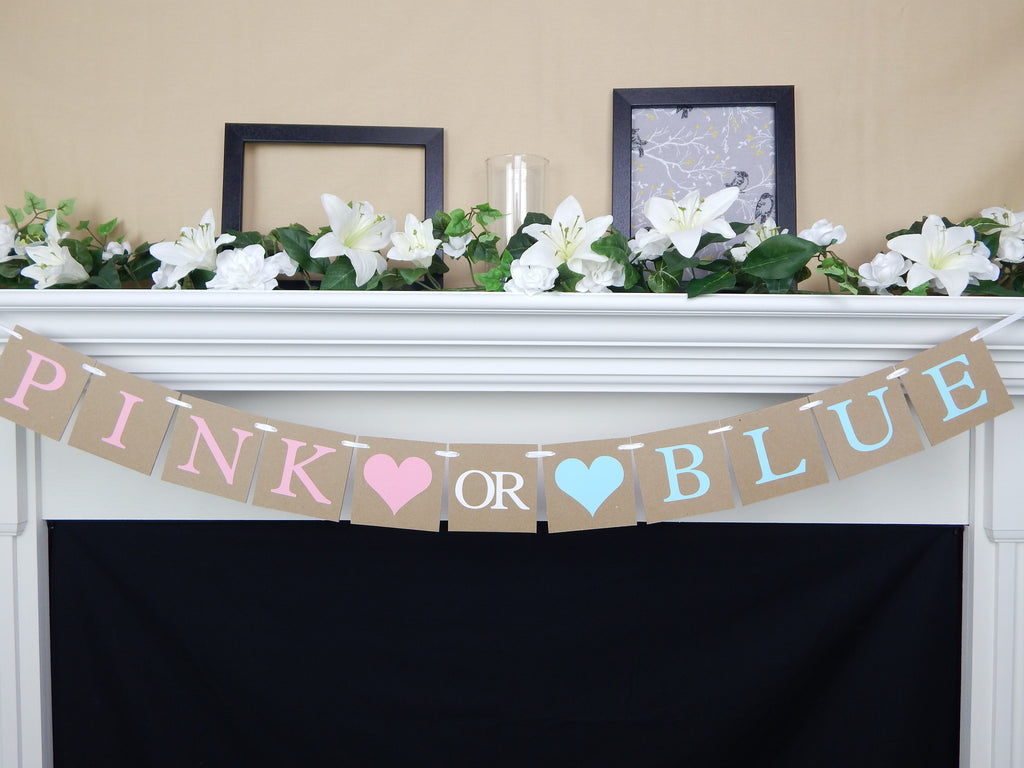 Pink Or Blue Gender Reveal Banner - Celebrating Together