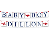 airplane baby boy custom name banner - Celebrating Together