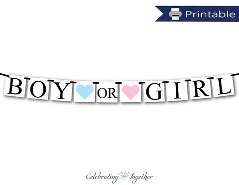 Printable Boy Or Girl Sign