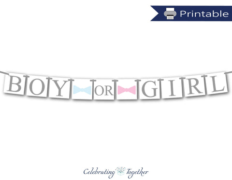 boy or girl banner - pink or blue gender reveal banner - Celebrating Together