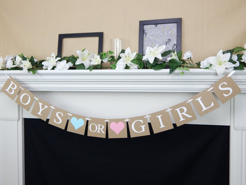 Twins Boys or Girls Gender Reveal Banner - Celebrating Together