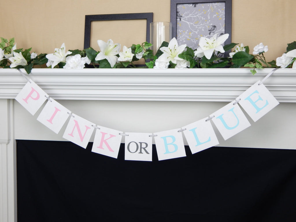 Gender Reveal Banner - Celebrating Together