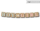 printable rustic boy or girl banner - Celebrating Together