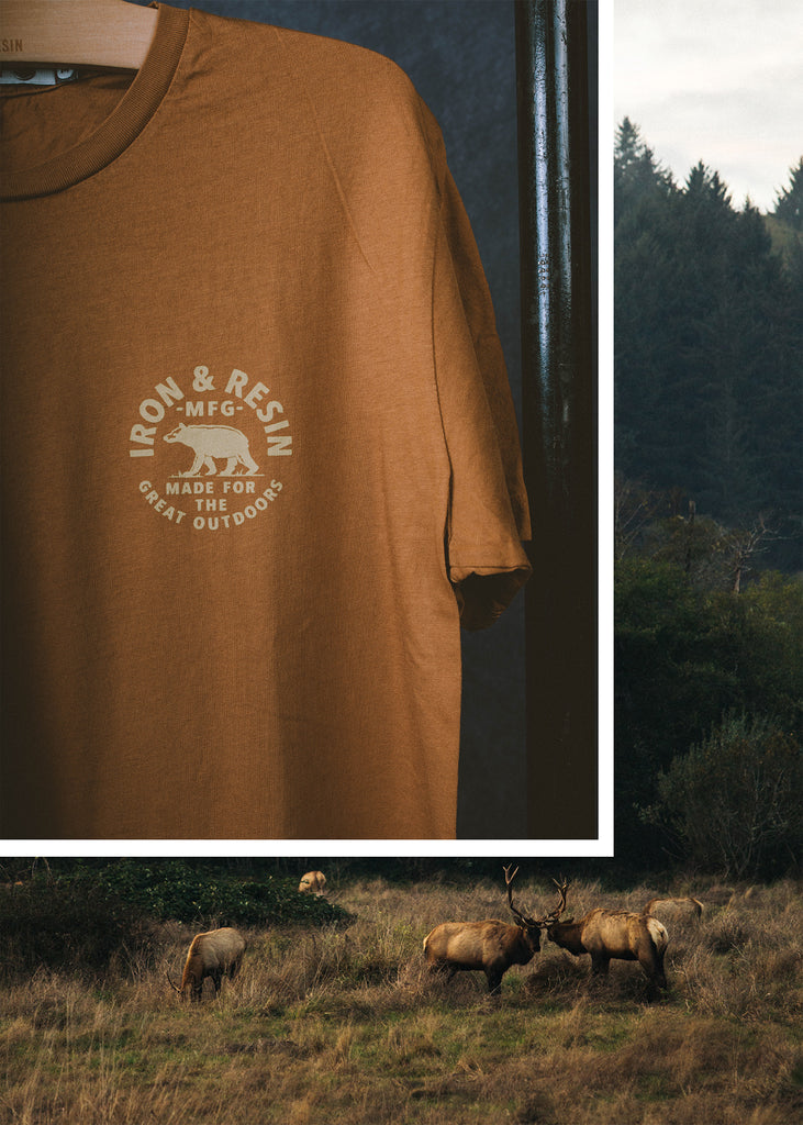 Iron & Resin Great Outdoors Tee in Brown