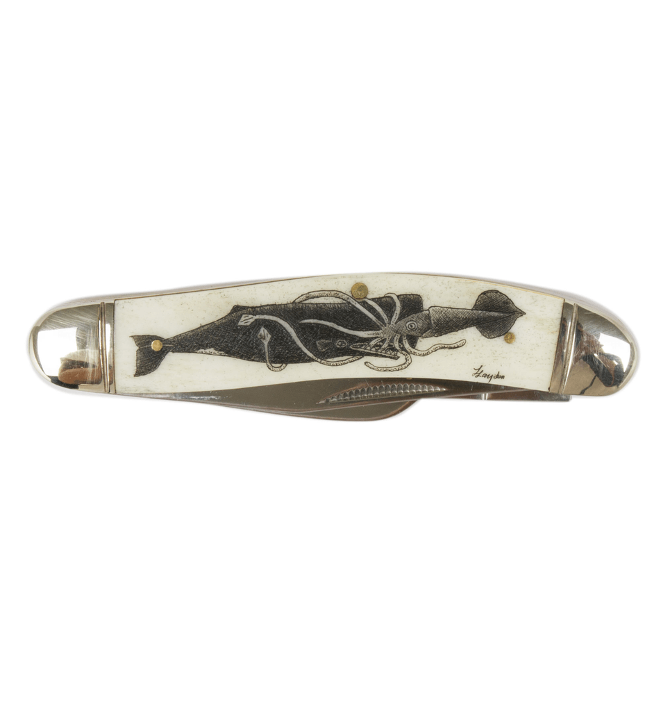 Scrimshaw Sowbelly Stockman Pocket Knife - Accessories: Knives - Iron and Resin