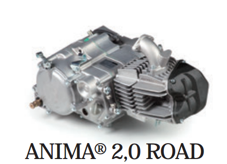 Daytona anima motor (ROAD 2.0) 150/190